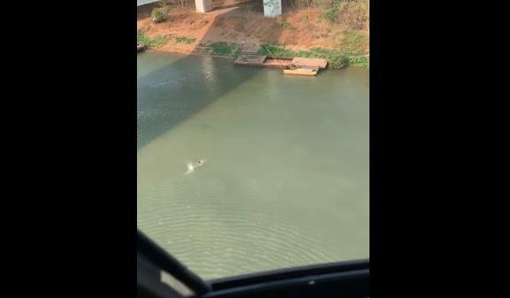 Homem se assusta com tiros e atravessa rio a nado para fugir; veja vídeo