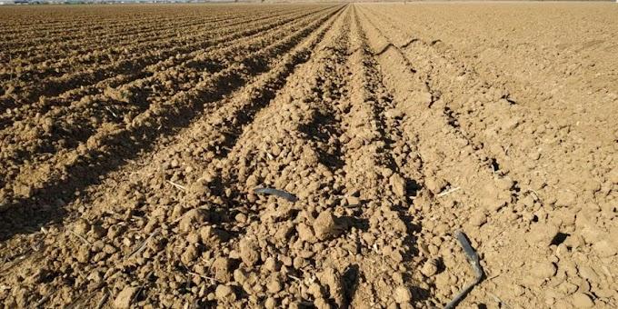 Agricultores de Jáchal tomarían medidas por la sequía
