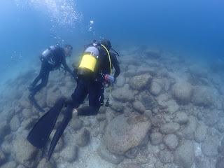 2021年4月1日の柏島ダイビング