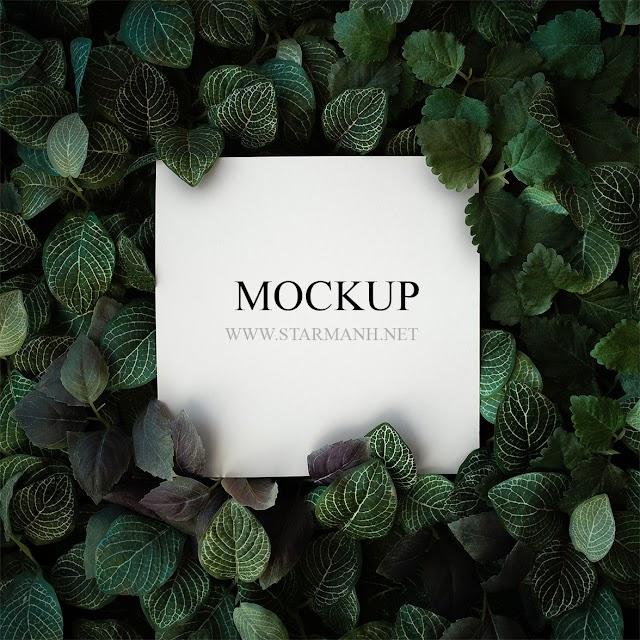 PSD Mockup logo nền lá đẹp