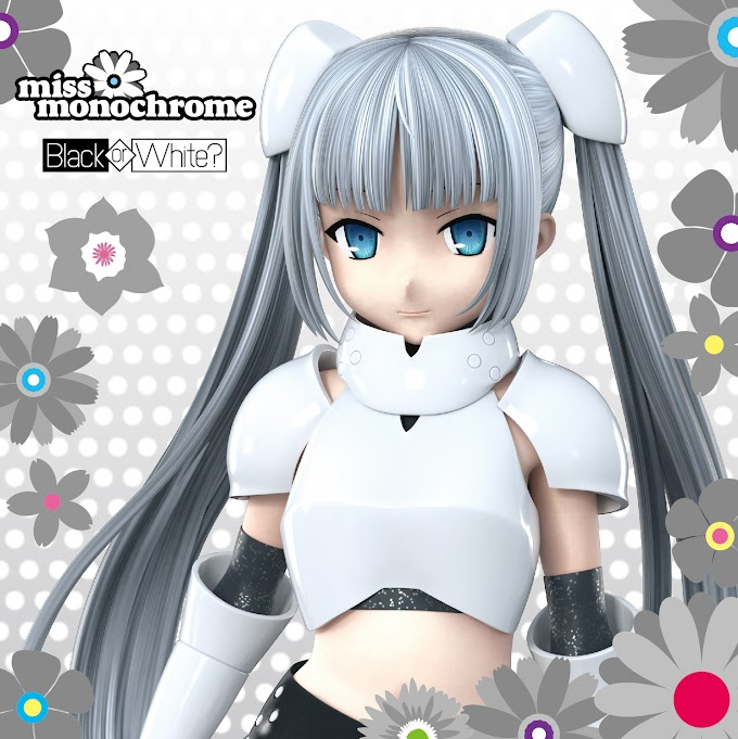 Miss Monochrome - Step by Step!