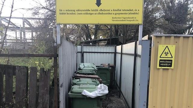 Kilenc kutyát vertek halálra, majd dobtak a sintértelep konténerébe Jászberényben – Sokkoló, ami az állatokkal történt