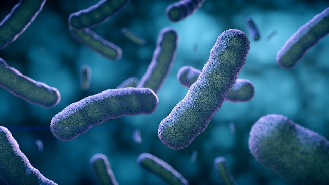 Bakteri Ada di Mana-Mana Termasuk Lingkungan Kerja, Yuk Lindungi Diri Kita Semua