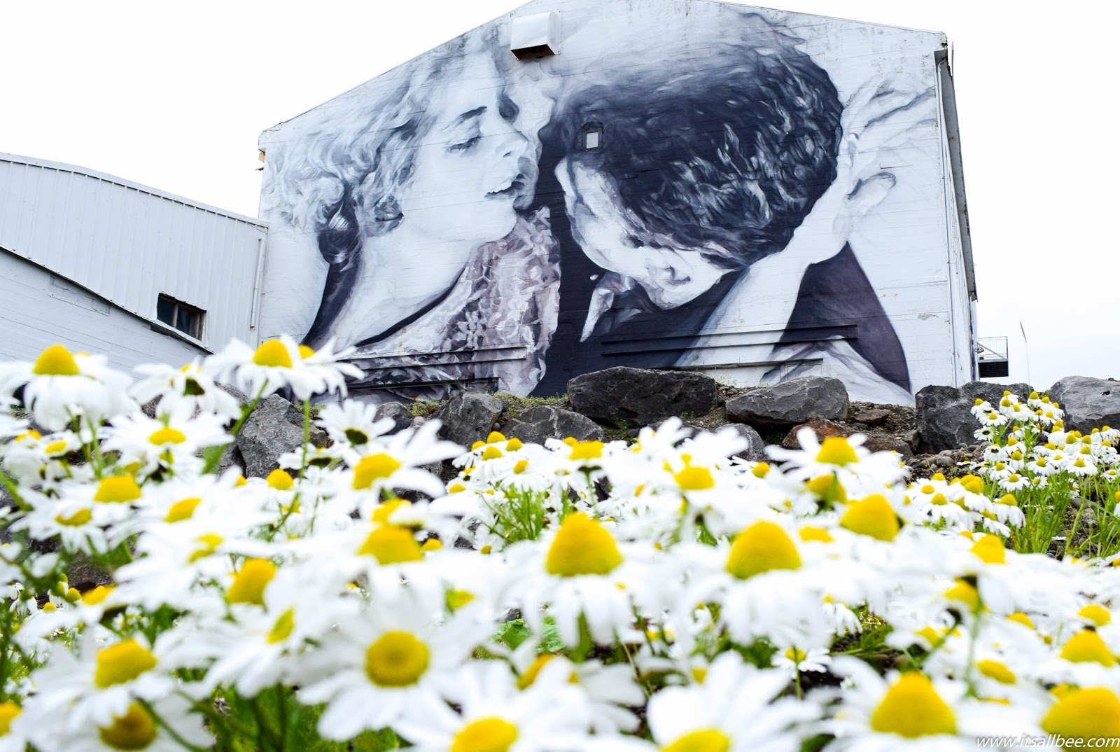 Iceland Street Art  A Colourful Side of Iceland You Need To Check Out