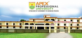 Apex Professional University