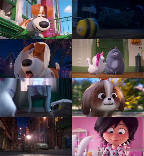 The Secret Life of Pets 2 2019 Dual Audio 720p BluRay