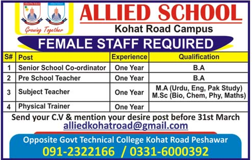 Jobs In Allied School Peshawar 2019
