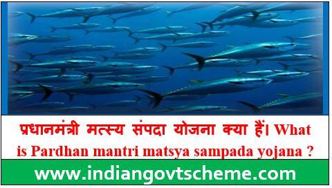 Pardhan mantri matsya sampada yojana