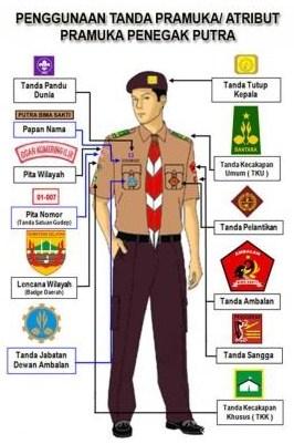 Atribut Seragam Pramuka : atribut, seragam, pramuka, Penggunaan, Tanda, Atribut, Pramuka, Menurut, Golongan, Materi,, Pembahasan, Lengkap
