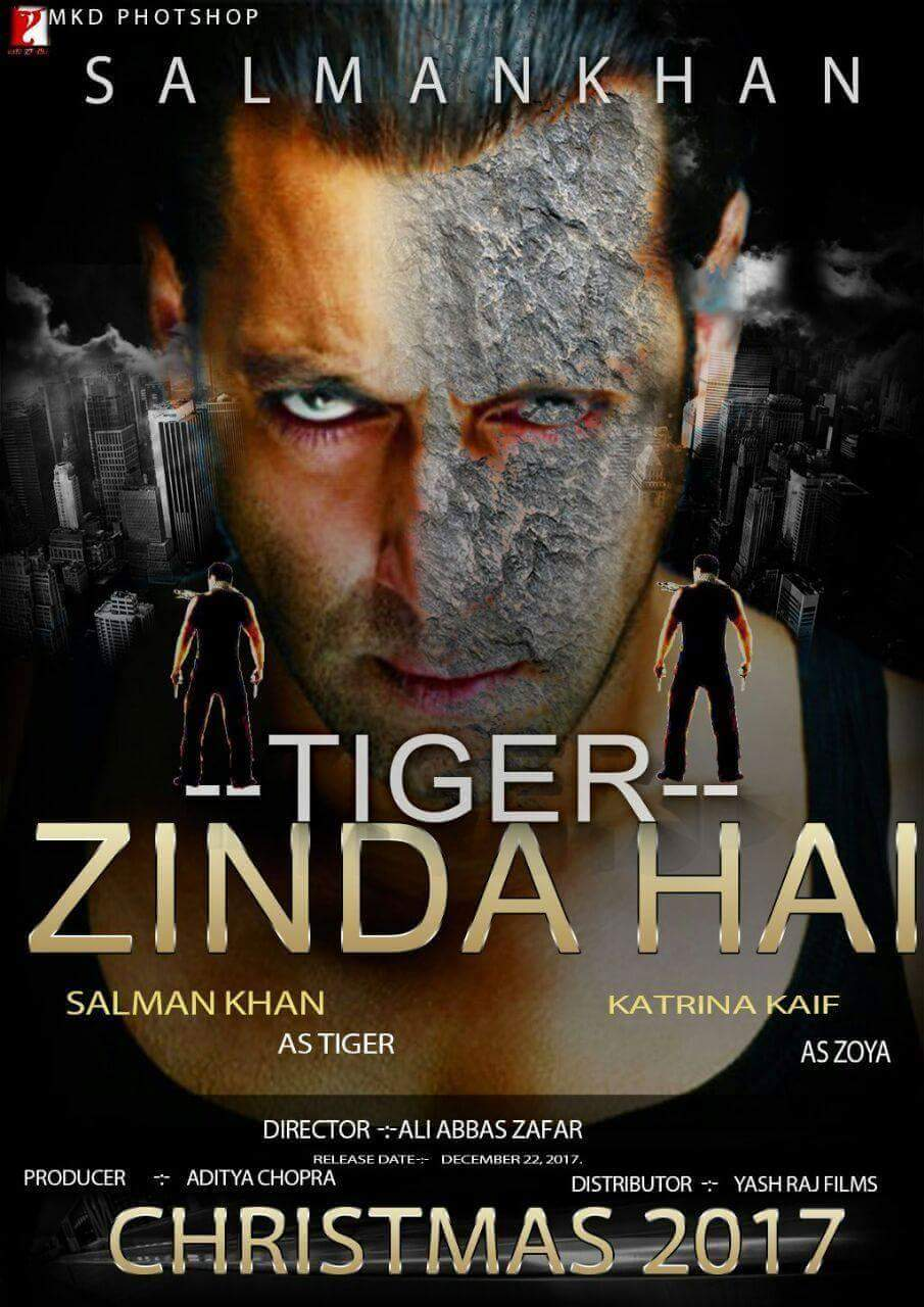 Tiger Zinda Hai Movie Wiki, Star Cast, Story Line, Release Date