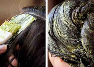 تجربتي مع زيت جوز الهند والأفوكادو تكثيف شعري