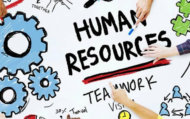 HR manager  | وظائف