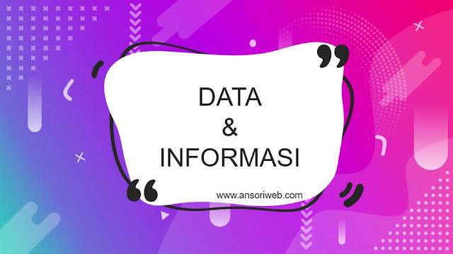 Pengertian Data dan Informasi : Fungsi, Ciri, dan Perbedaannya