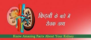 किड़नी के बारे में रोचक तथ्य, Kidney Facts in Hindi, kidney ke bare me tathyar, गुर्दे (किडनी) के बारे में रोचक तथ्य, गुर्दे के रोचक तथ्य, किडनी के बारे में रोचक तथ्य, Facts about Kidney in Hindi