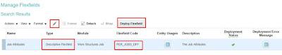 manage descriptive flex fields page to check the flex fields in fusion hcm