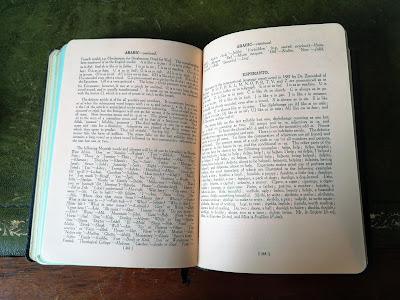The phrasebook open at the grammatical descriptions of Arabic and Esperanto