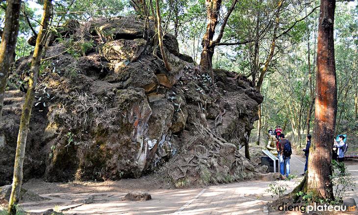 situs batu tulis atau batu semar di dieng plateau