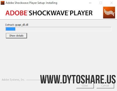 Adobe Shockwave Player 12.2.5.195