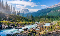 Wilderness Photo by Hendrik Cornelissen on Unsplash