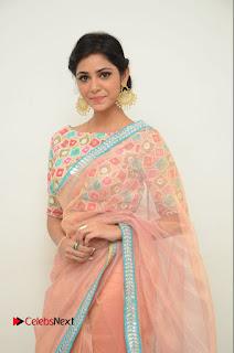 Actress Priyanka Bharadwaj Pictures in Saree at Mister 420 Press Meet  0015.JPG