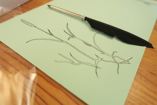 calligraphy drawing grass