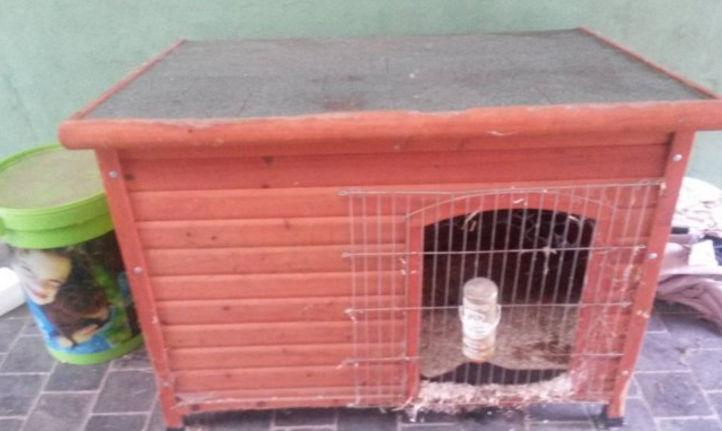Het vrolijke konijnenhol huisvesting - Een hok ...