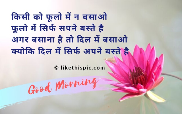 good morning Shayari love