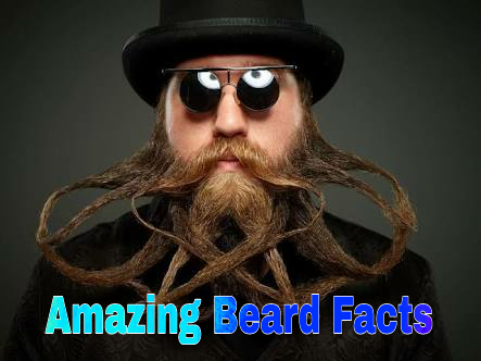 Beards Facts In Hindi Rochak Jankari