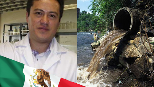 Investigador mexicano descubre hongos que purifican el agua contaminada por fármacos.