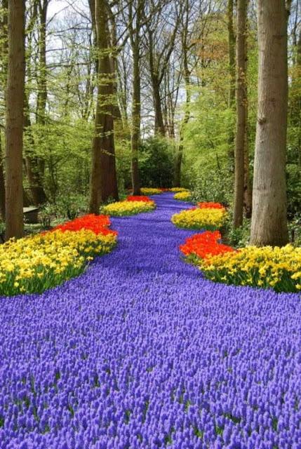 Descubre Tu Mundo Destino Los Espectaculares Jardines De