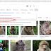 Cara Mendapatkan Gambar Bebas Copyright di Google secara Gratis