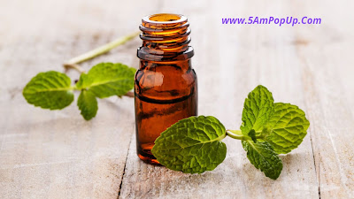 Peppermint Essential Oil For Cold Sores - Thand Se Bachne Ke Upay