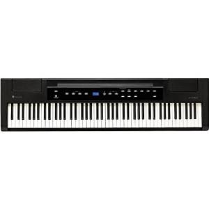 Williams Allegro 88-Key Hammer Action Digital Piano