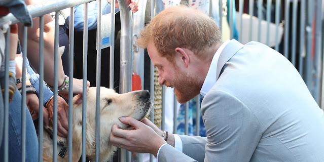 Prince Harry and Meghan Markle prefer dogs over cats