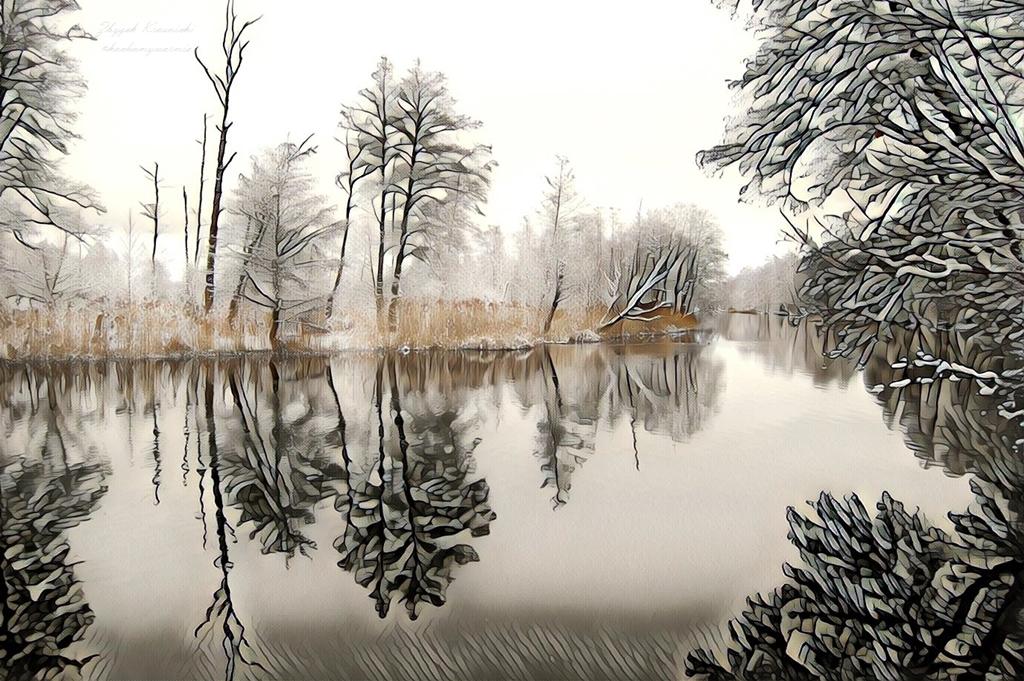 Rzeka Wadąg | Zimowy spacer wzdłuż północnych granic Olsztyna
