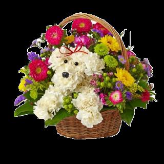 flower Happy Birthday PNG