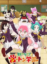 جميع حلقات الأنمي Murenase! Seton Gakuen مترجم