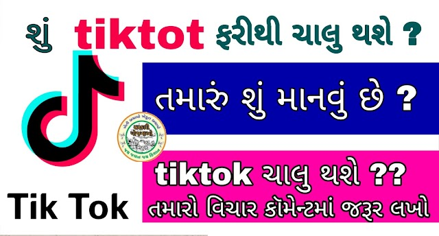 Ceo of Tiktok Varote to Government of India, Experts Say App Can Be Restored