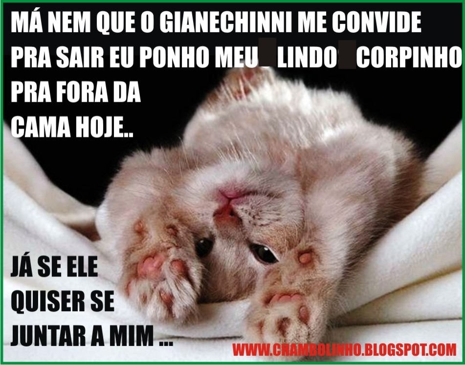 humor pra whatsapp chambolinho recados
