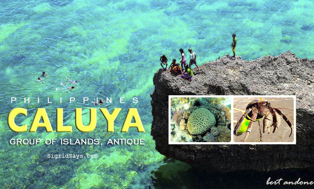 Caluya Group of Islands - province of Antique - Philippines - travel - visit Caluya - Tatus coconut crab - Tatusan Festival schedule of activities- Mayor Genevieve Lim-Reyes - white sand beach - Bacolod blogger - snorkeling - cliff diving - Caluya Island