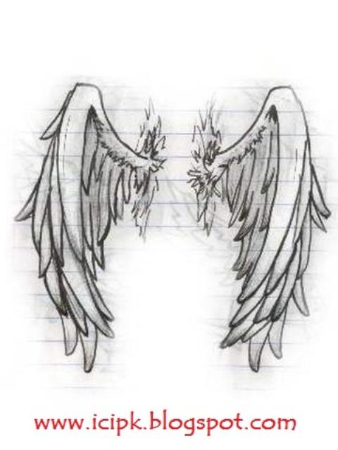 Angel-wing-drawing | http://icipk.blogspot.com