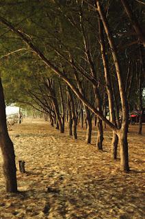 Pantai Tuban Jawa Timur