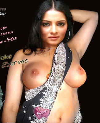 Sexy Celina Jaitly showing boobs in saree