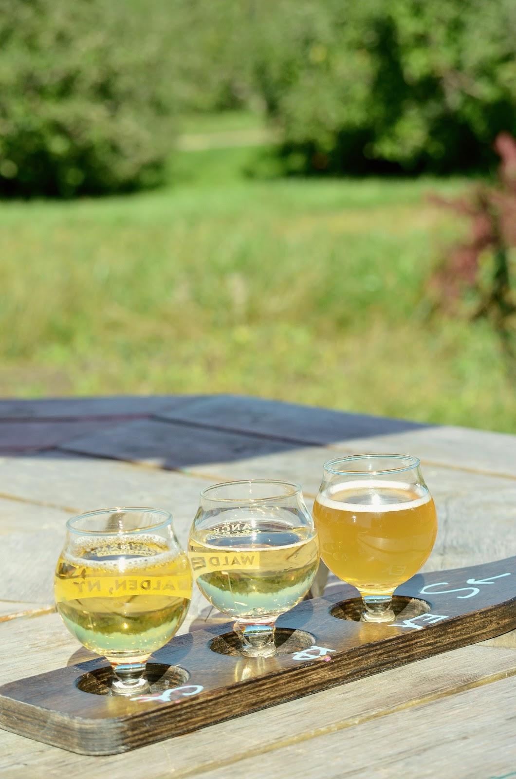 Angry-Orchard-Wine-Tasting-Upstate-Warwick-New-York