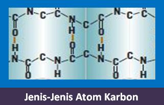 Contoh Soal Jenis-Jenis Atom Karbon Beserta Jawabannya