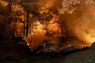 incendie Trois Pignons 4 aout 2020 SDIS77