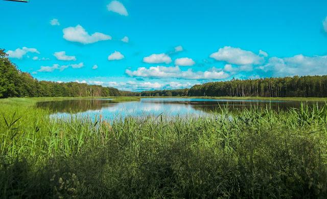 Stary Tartak, Duży Staw, wycieczka rowerowa, Kozłowiecki Park Krajobrazowy, las, natura