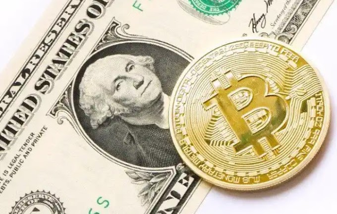 Buy CoinCeller – Best Fake Bitcoin Sender Software