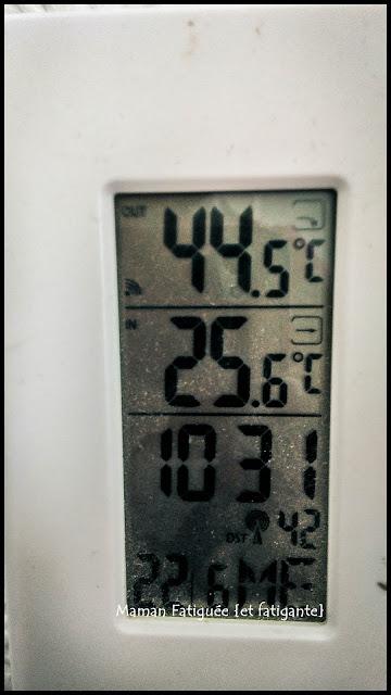 temperature caniculaire
