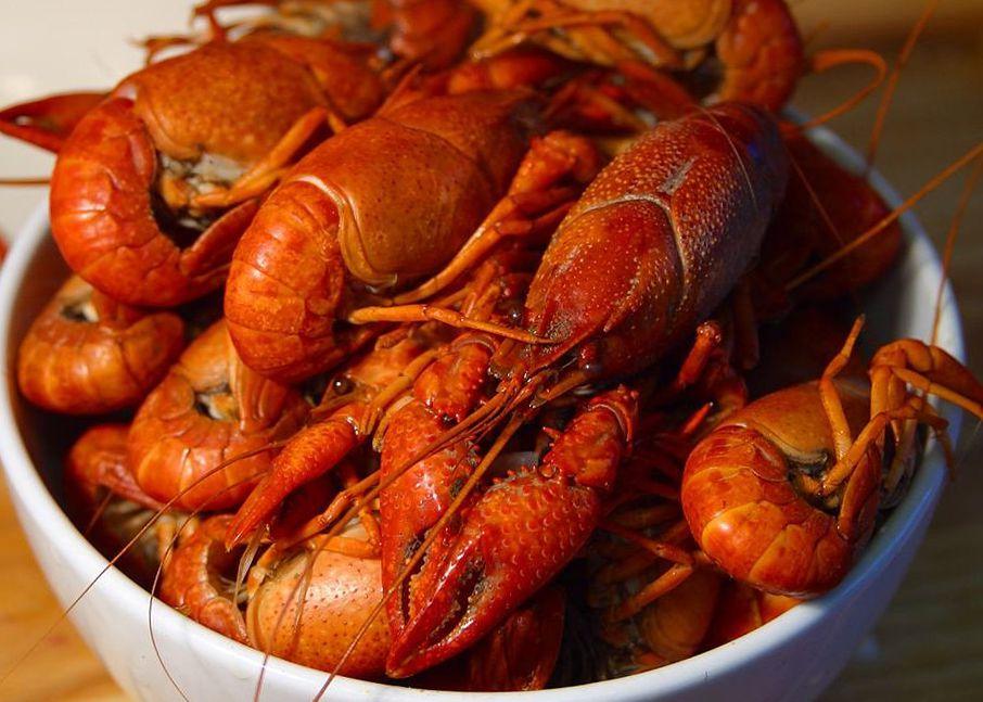 manfaat mengkonsumsi lobster untuk kesehatan